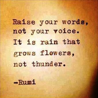 raise your words not your voice rumi