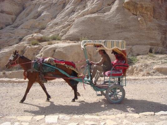 Horse drawn carriage in Jordan by Eva the Dragon 2009