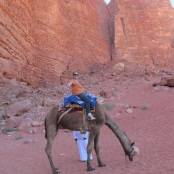 Louise on her camel