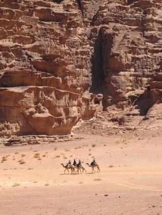 Tourist Camel Caravan