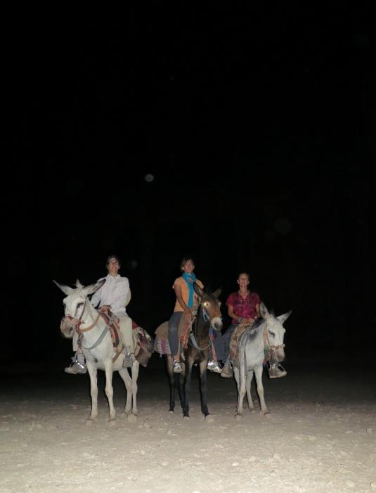 Donkeys in front of treasury petra at night