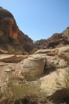 trail to treasury in #petra by @evathedragon2013