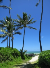 majlis kailua hawaii by eva the dragon