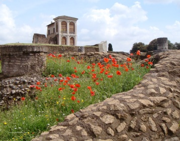 Palantine Hill Rome by eva the dragon 2013