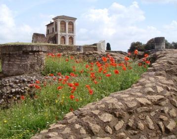 Palantine Hill Rome by eva the dragon 2013